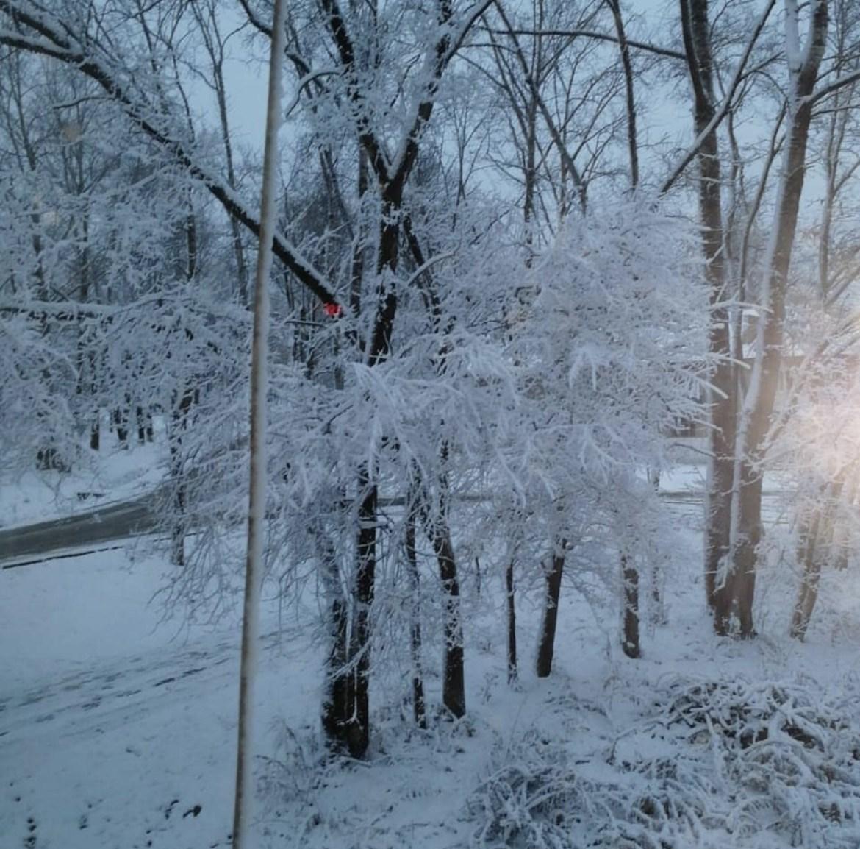 Привет, снег