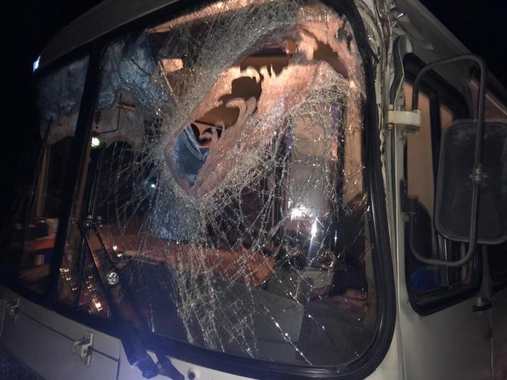 Почти как в хорроре «Пункт назначения»: бревно с лесовоза ударило автобус с пассажирами в ЕАО