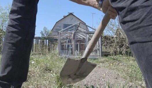 Отомстил за избиение сестры, убил обидчика и закопал труп в огороде житель села в ЕАО