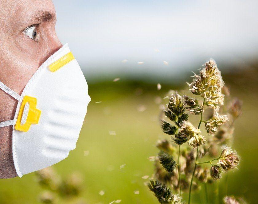 Я – аллергик, и с приходом весны начал шмыргать носом. А вдруг «корона»?🤧