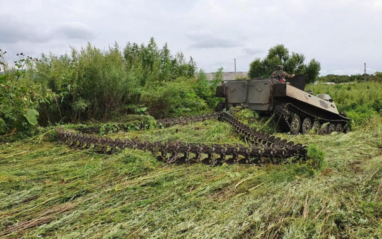 Гусеничной техникой уничтожили 45 тонн дикорастущей конопли в Ленинском районе ЕАО