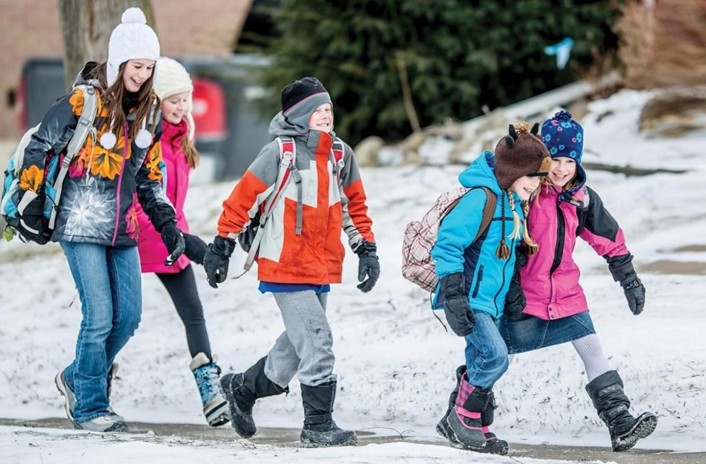 Новогодние каникулы для школьников ЕАО начнутся 28 декабря