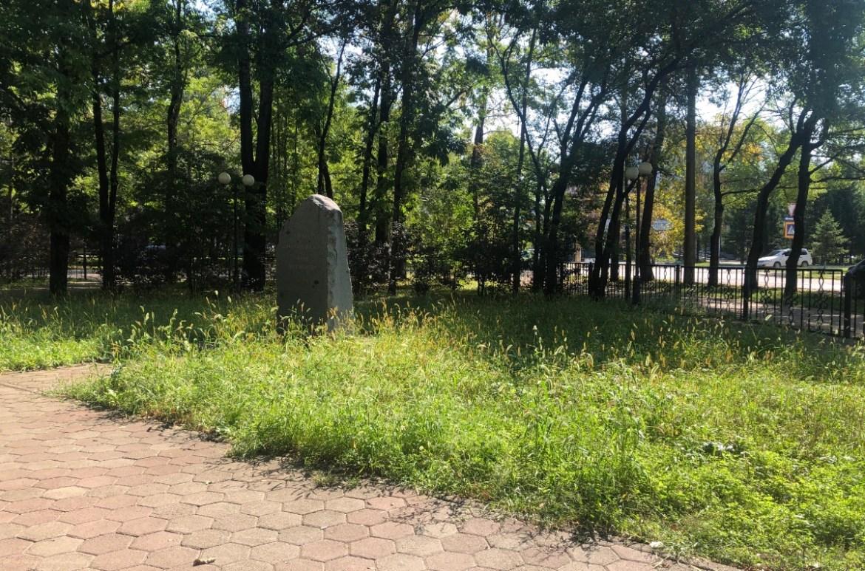 Сквер Первостроителей в Биробиджане внесли в план по скосу травы — мэрия