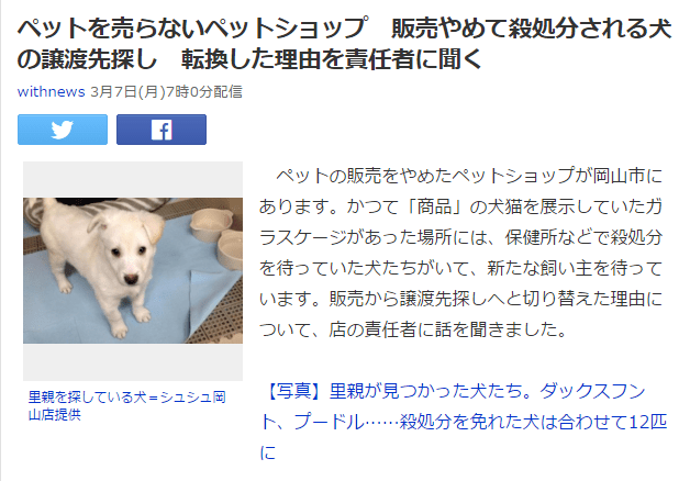 犬 ニュース