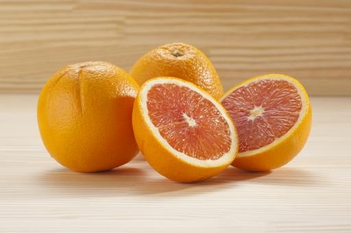 オレンジ 犬