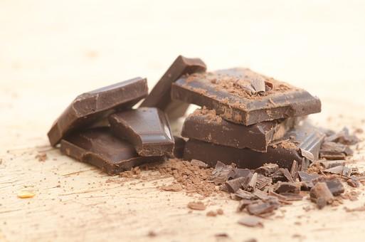 チョコレート 犬