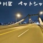 江戸川 ペットシッター