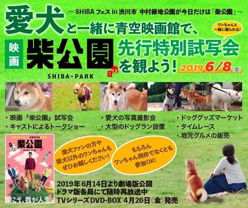 SHIBAフェス 犬イベント
