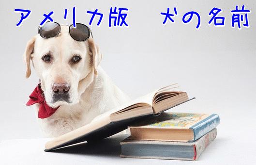 犬の名前 アメリカ