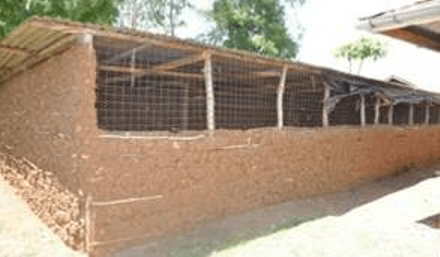 Things to consider when building a Kienyeji Chicken House