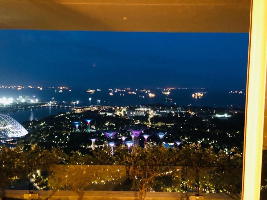 マリーナベイサンズからの眺め