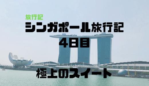 家族4人で行ったシンガポール旅行記 4日目(お役立ち情報あり!モデルコースとしても参考に)