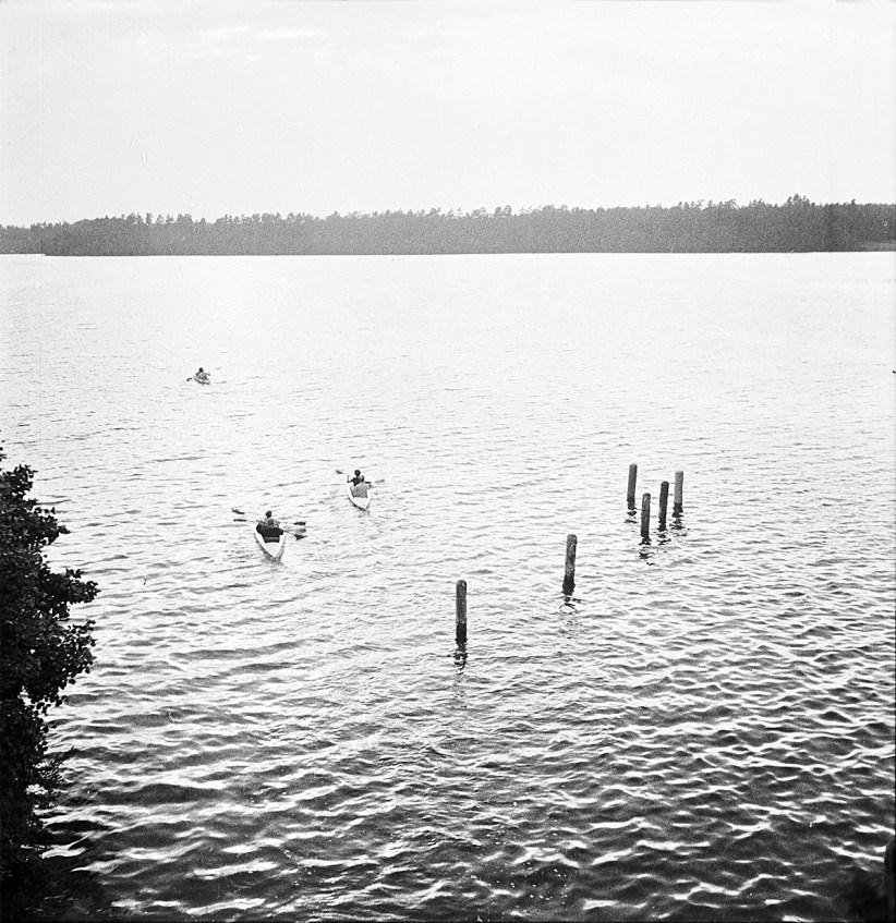 1960 (5)