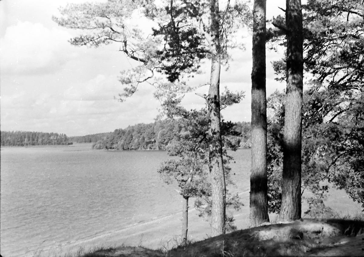 Necko, czyli jezioro najbliższe
