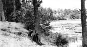 1966_07_prace-ogrod__lipowiec_biale (27)