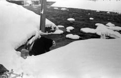 1977_zima_zarzad_kanalu_nigdy_wiecej (17)