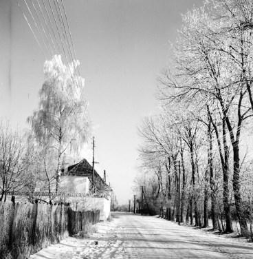 1964_nad_kanalem (4)