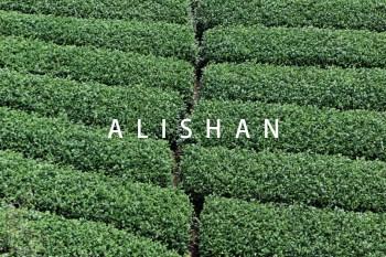 阿里山景點 跟著台 18 線走透透 品茶與咖啡香-生力農場/優游吧斯/龍雲農場