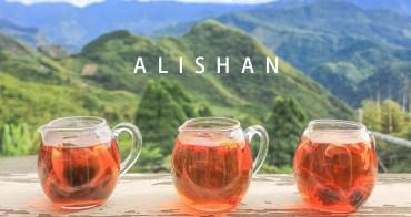 阿里山景點 跟著台 18 線走透透 品茶與咖啡香-春馨製茶/嵩茂福園餐廳/築夢森居