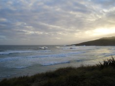 Catching a glimpse of sunset by the Otago Peninsula, in Dunedin, New Zealand.