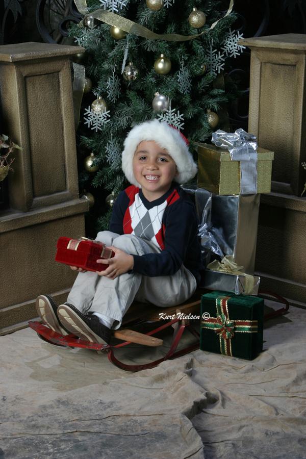 Toledo Photographer Christmas