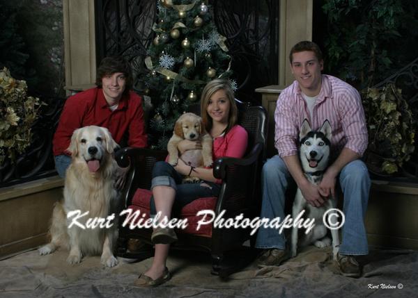 Professiona Pet Photographer Christmas Toledo