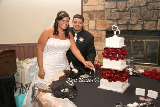 Toledo Ohio Wedding Photographers