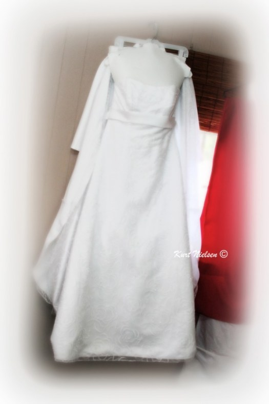Hanging Wedding Dress Photo