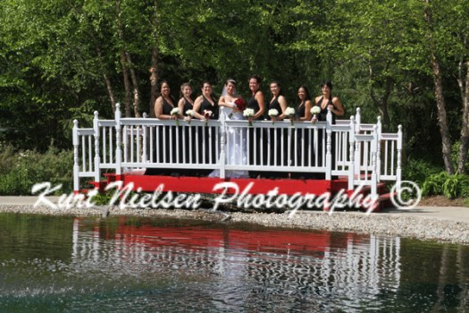 Bridge used in wedding photos