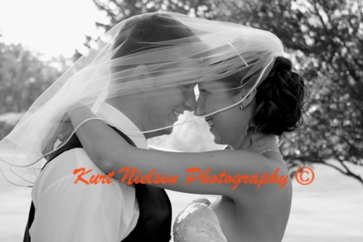 Bride's Choice Wedding Photographer Toledo
