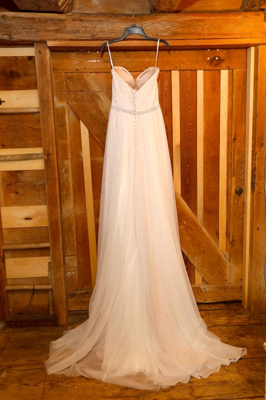 back of the wedding dress
