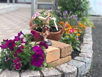 New gardening