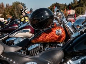 2019HD30_European_Bike_Week_Review_47
