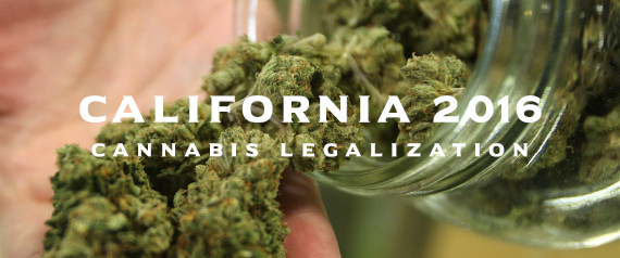 california-cannabis-legalization-20161