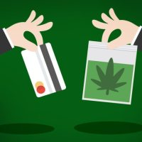 18 Websites to Buy Weed Online in California