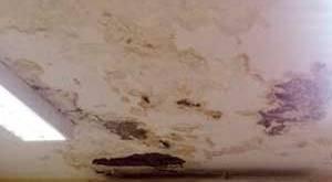 علاج سقف الحمام