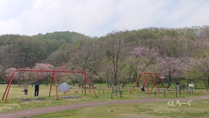 釧路町にある別保公園のブランコ