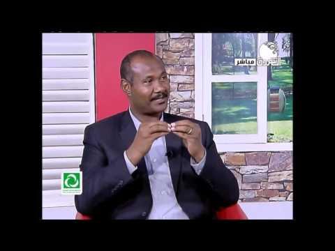 شباب العرب وأفريقيا يدشنون مسلسل (ظلال)
