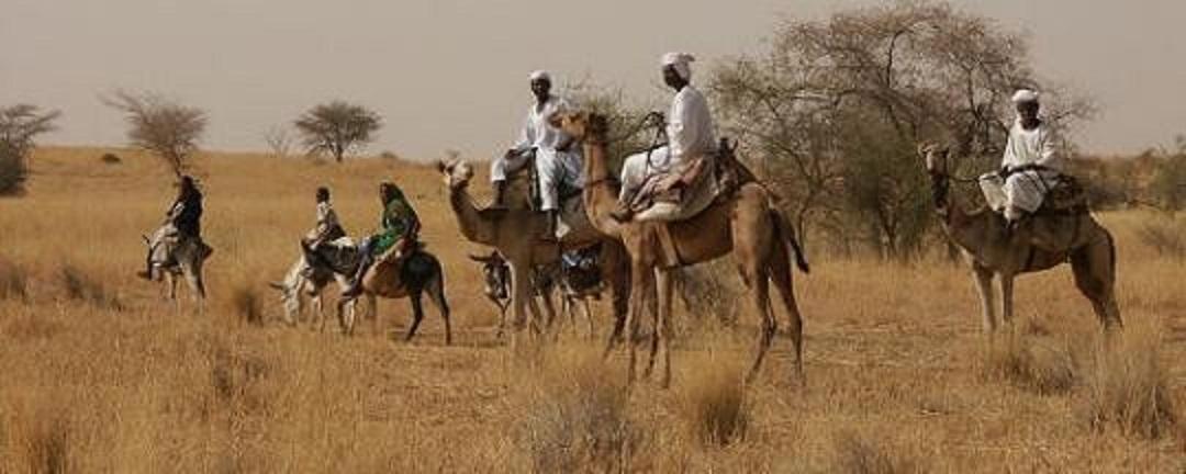 """مقتل وإصابة """"15"""" شخصاً في هجمات بغرب دارفور"""