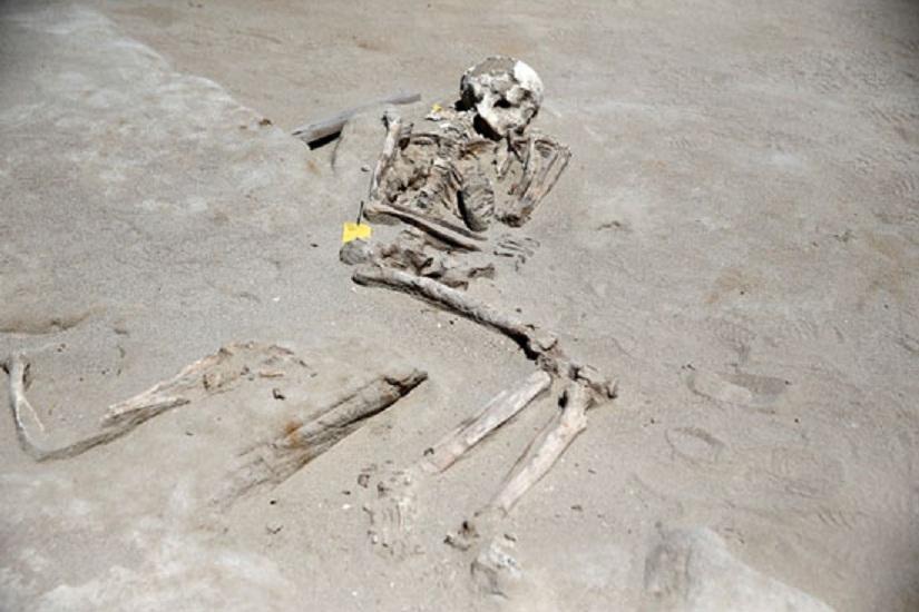 العثور على مقبرة تحت شجرة بمدرسة أساس بمحلية شندي