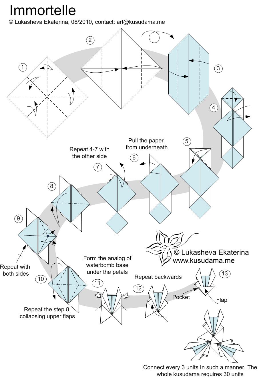 medium resolution of diagram for immortelle kusudama