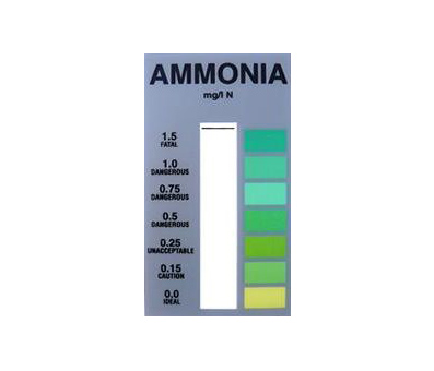 Kusuri Ammonia Test Card