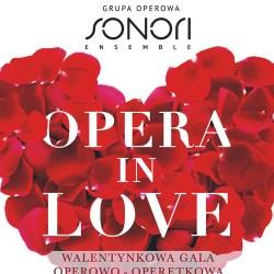Walentynkowa gala - Miłość w Operze