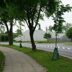 Aplikatory do podlewania drzew w czasie suszy