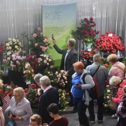 Rekordowa liczba oglądających wystawę róż
