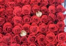 Wystawa róż ogrodowych – która róża najpiękniejsza?