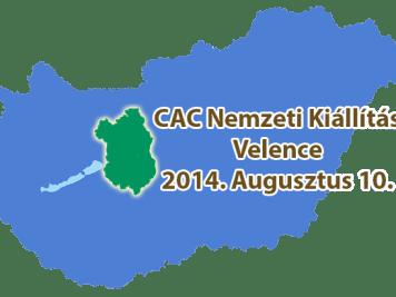 CAC Nemzeti Kiállítás – Velence - 2014. Augusztus 10.