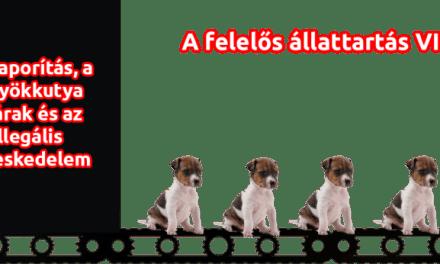 Felelős állattartás VIII. fejezet – A szaporítás, a kölyökkutya gyárak és az illegális kereskedelem