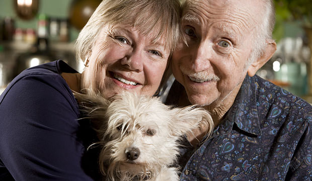 A kutyatulajdonosok tovább élnek