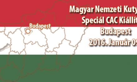 Magyar Nemzeti Kutyafajták Speciál CAC Kiállítása – Budapest – 2016. Január 09.